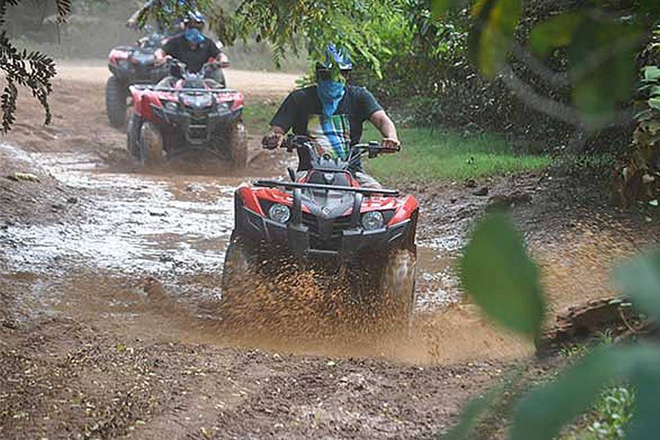 BUGGIES – Dune Buggy, CanAm 1000 or Quad (4-wheeler)