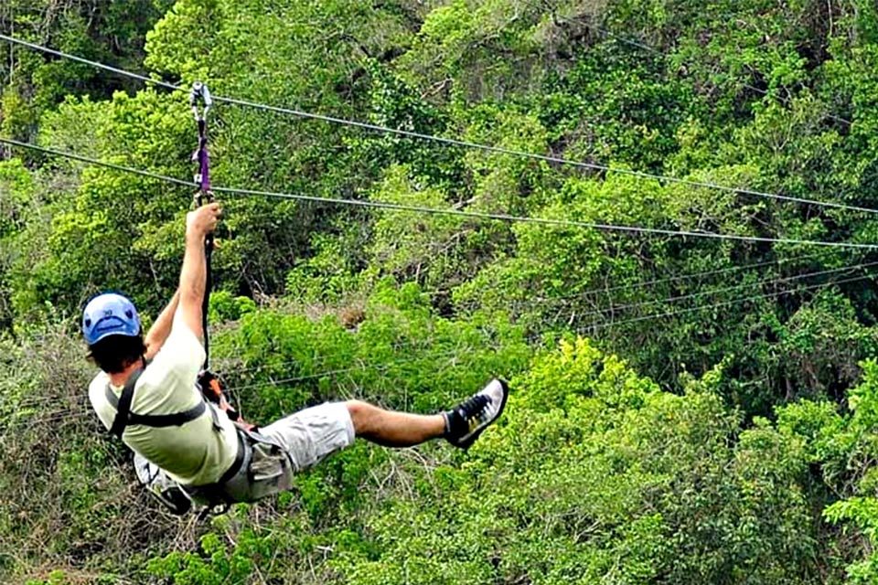Canopy Adventure Zip Line