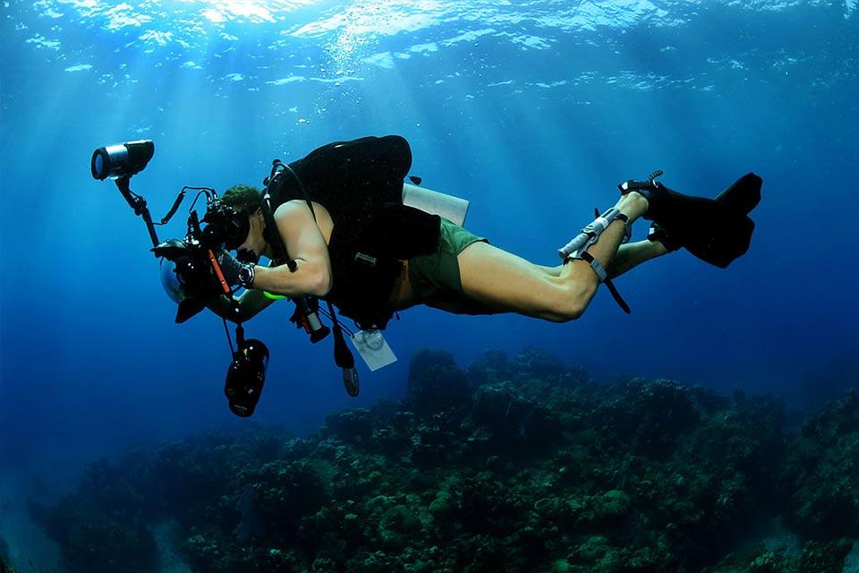 diving_dominicana_aowd.jpg
